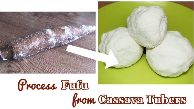 How To Extract Cassava Fufu From Cassava Tubers (VIDEO)