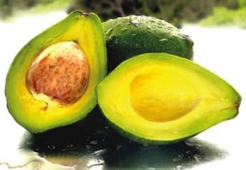 Avocado-360x249