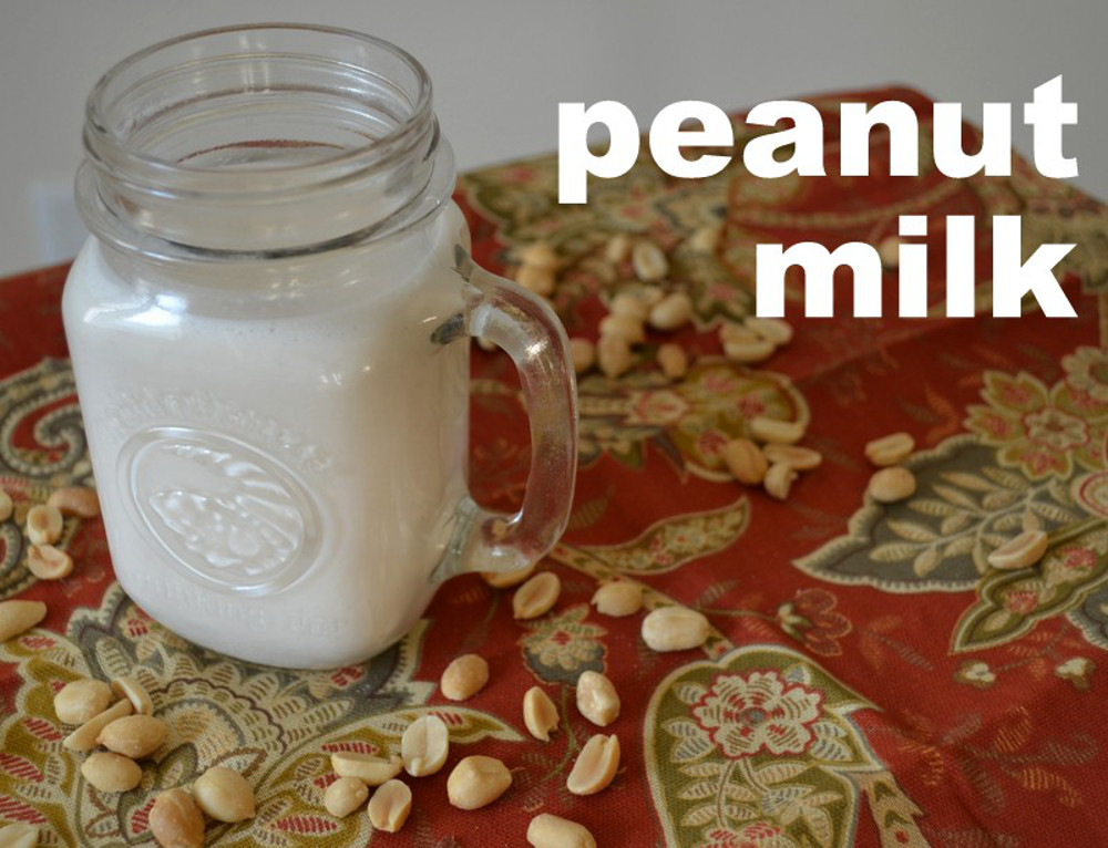 how to make peanut milk at home