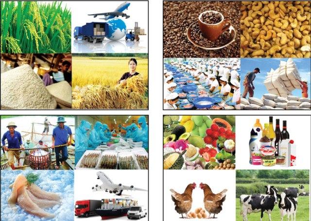 vietnam export(2)