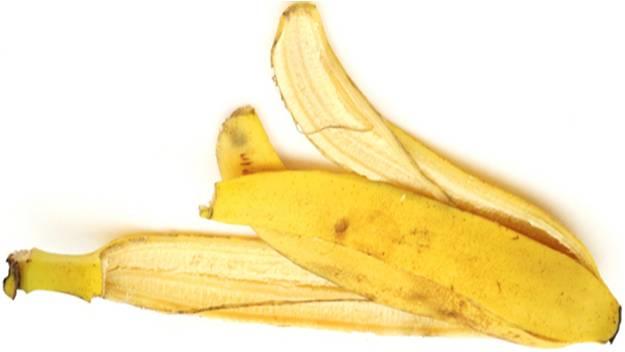 BananaPeel11