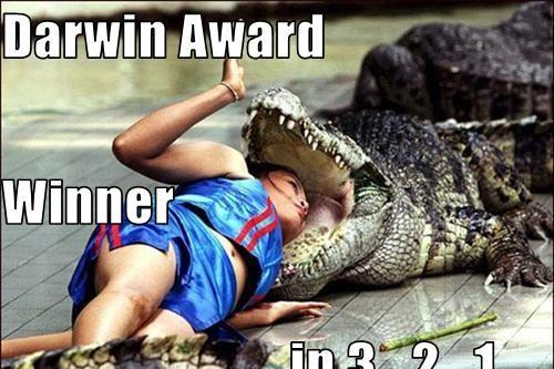 Darwin-Awards-Wnner