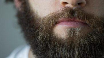 beard_main_0