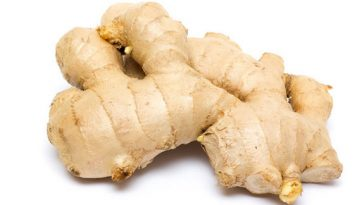 ginger-root-111011-02