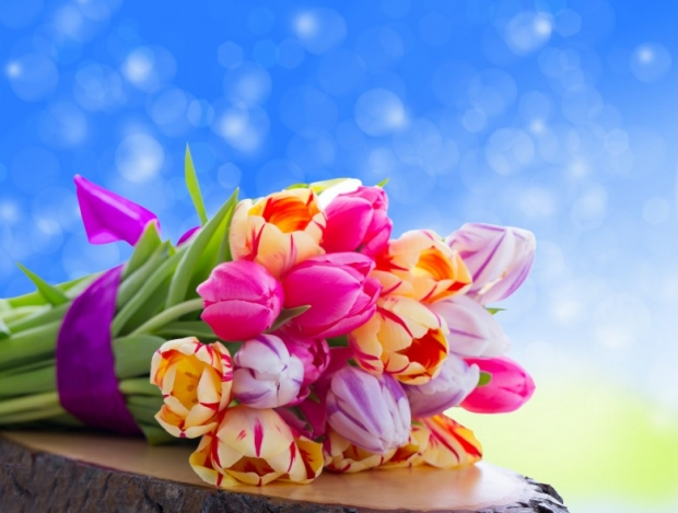 Beautiful-Flowers-Images-Gallery-7