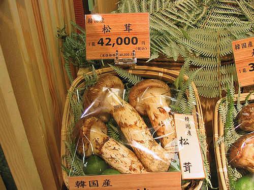 korean-matsukake-mushrooms-photo-japan