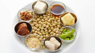 soy-protein-cholesterol-diet