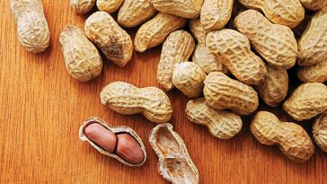 Groundnut-The-Dollar-Business