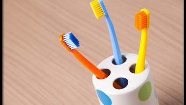 ugly-truth-about-your-toothbrush-s6-photo-of-toothbrush-holder