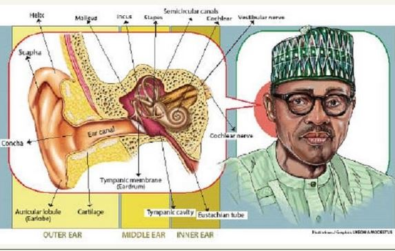 Buhari earr
