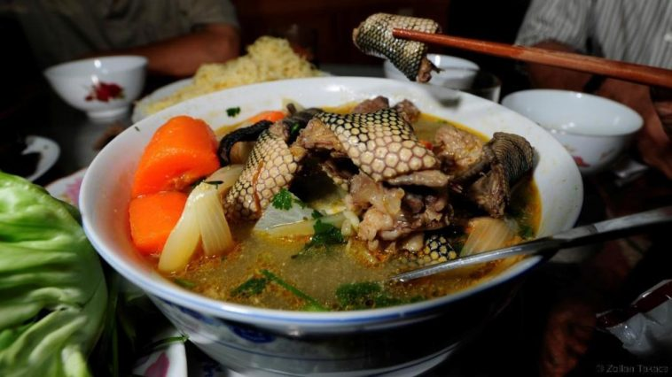 Snake Pepper Soup