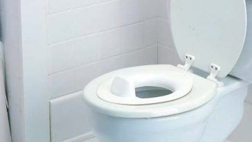 40-million-toilet