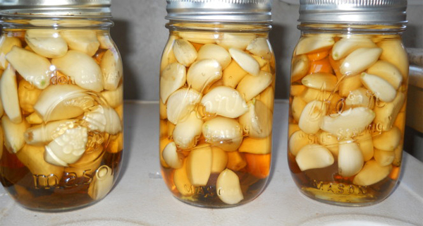 garlic-apple-cider-vinegar-and-honey