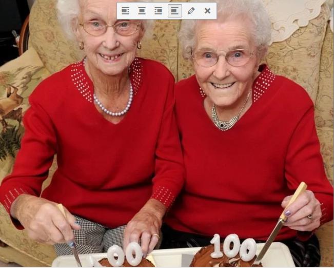 twins-celebrates-100-years