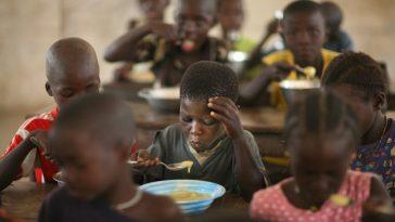 free-feeding-in-schools