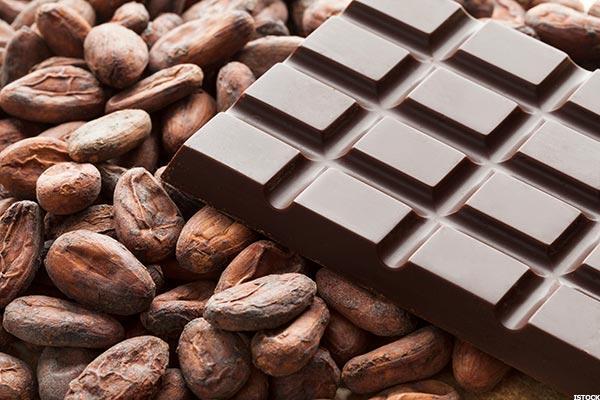 Cocoa Beans Farming Has Prospect-Cocoa Farming Team